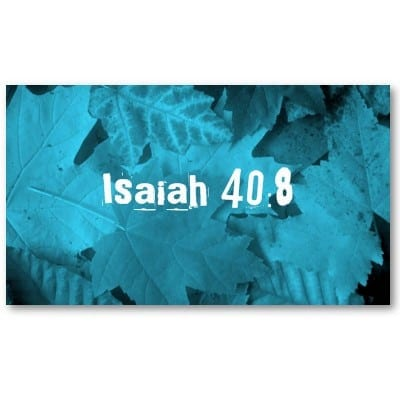 scripture_memory_card_business_card-p240459506785448725en3d3_400