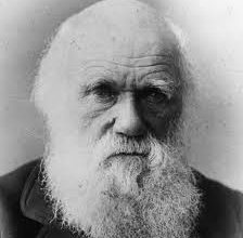 Photo of Darwin Turns 200